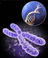 سلول درمانی و مهندسی بافت