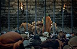 عکس نقی نقی نقی نقی نقی شیر امام