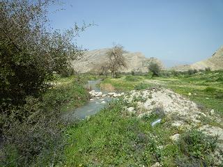 رود شاپور