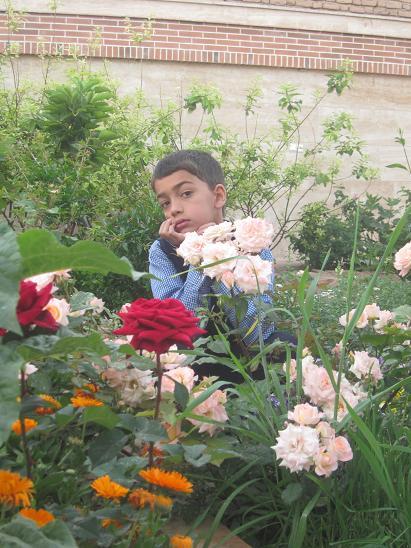 گل زیبای من دوستت دارم