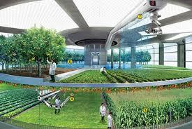 Image result for کاربرد انرژی هسته ای در صنایع غذایی