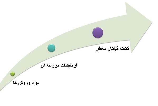 تاثیر کود سبز بر روی علف هرز www.sarafraz-hezarmasjed.blogfa.com