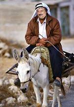 خر سوار عرب
