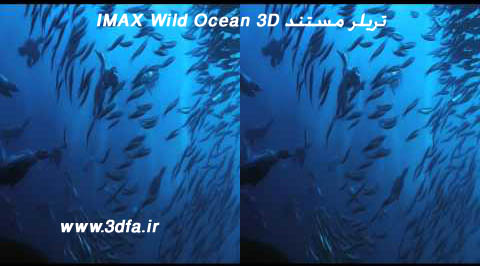 IMAX Wild Ocean screenshot,آیمکس ویلد اوشن ، اقیانوس وحشی 3بعدی