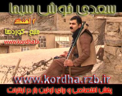 http://s3.picofile.com/file/7391967632/saedi_aks.jpg