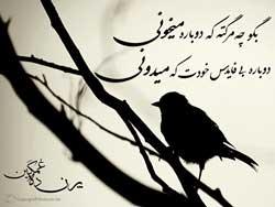 پوستر جدید محسن چاوشی