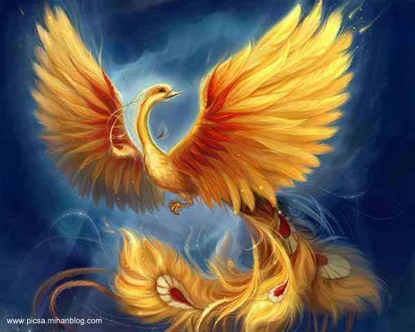 ققنوس، پرنده ی بی همتای اساطیری