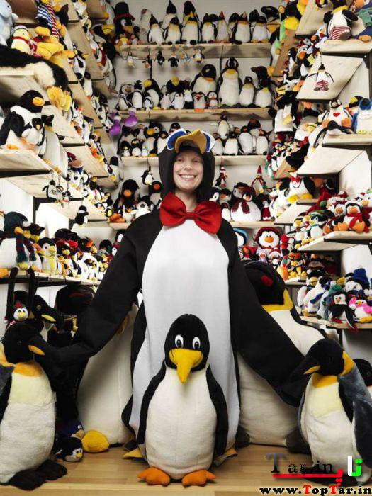 بزرگترین کلکسیون عروسک پنگوئن