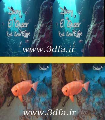 ماهی سه بعدی | www.3dfa.ir
