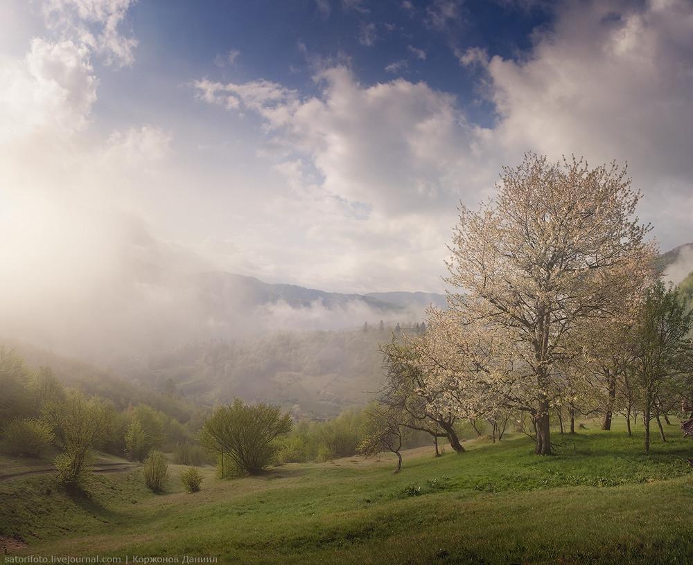 رشته کوه کارپات