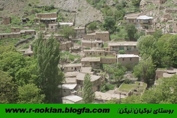 نوكيان طارم زنجان