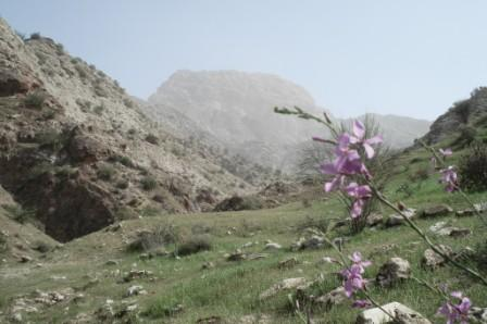 کوه قلعه باغ تاج