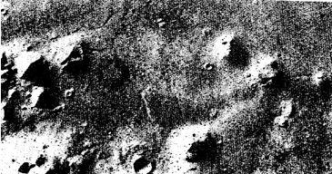 صورت مریخ