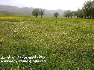 my lovely village: jang tappeh