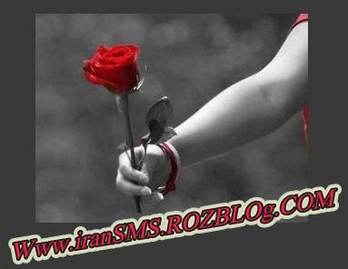 http://s3.picofile.com/file/7560381284/0_9978450013533390.jpg