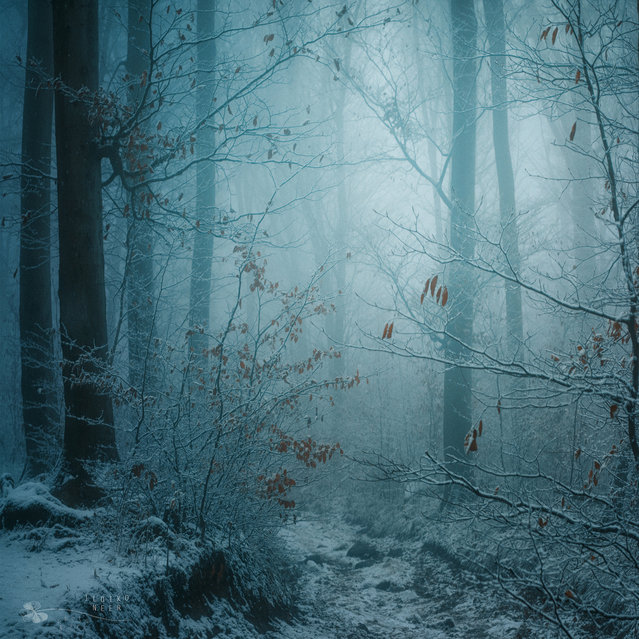رویای زمستانی