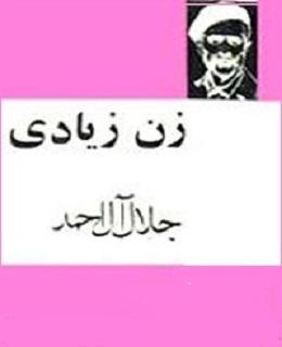 کتاب زن زیـادی
