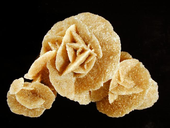 عکس سنگ گچ به شکل گل