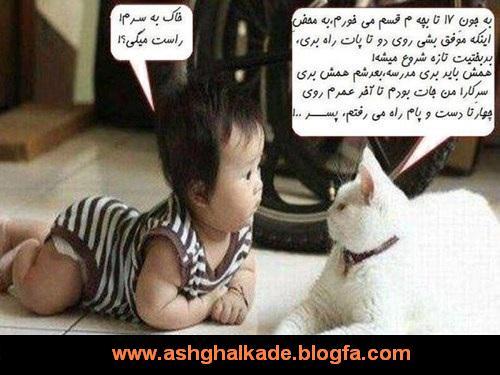 http://s3.picofile.com/file/7712078488/rr_8_.jpg