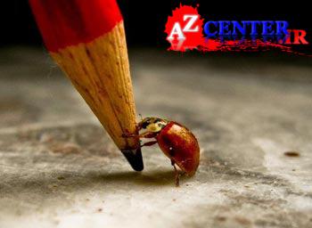 یکی از فانتزیام اینه که فروردین ۹۲   |   www.AZCENTER.ir