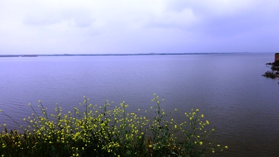 دریاچه ی سد گلستان