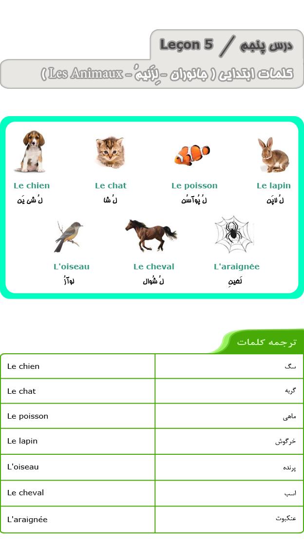 درس پنجم آموزش زبان فرانسه - کلمات ابتدایی