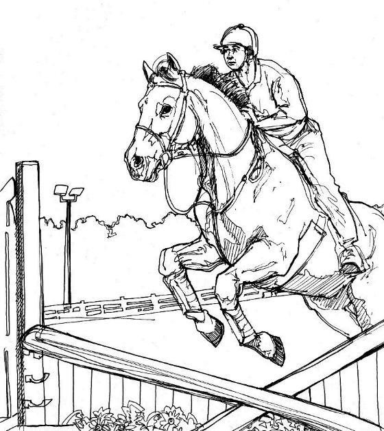 Paard Kleurplaat Png 12 عکس بی رنگ از اسب مخصوص نقاشی و رنگ آمیزی