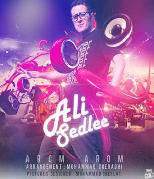آهنگ جدید و زیبای علی سدلی به نام آروم آروم