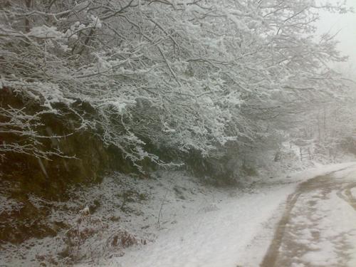 اولین برف رمستانی در منطقه رزکه1392