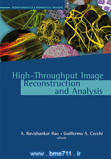 High-Throughput Image Reconstruction and Analysis