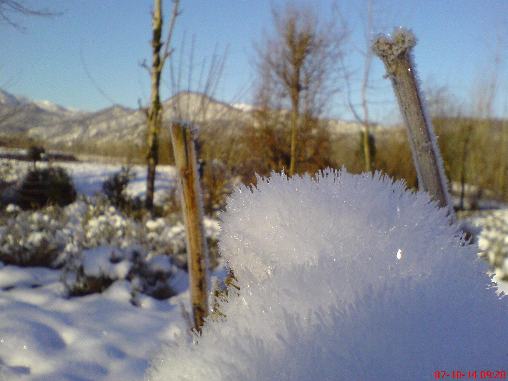 عکس برف زمستانی روستای شولم
