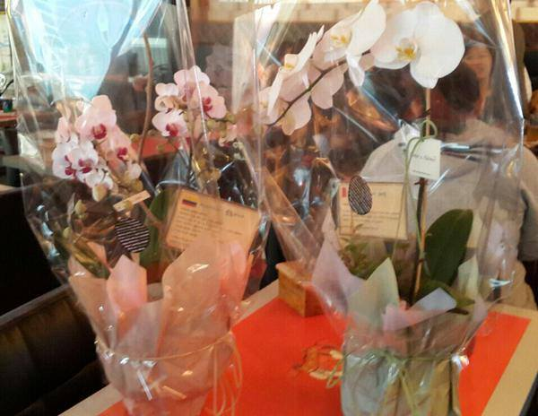Flower Arrangements From Peru,Colombian Fans Were Sent to Jaksal Ilsan for KHJ Enlistment