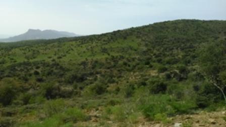 نواحی غربی کوه بیل به سمت دشت ارژن