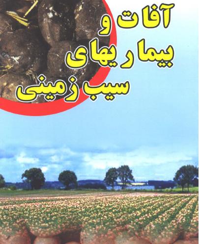 کتاب آفات و بیماری های سیب زمینی