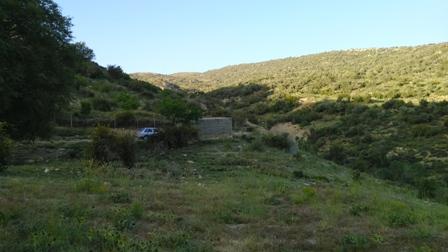 سرحد کوه بیل -