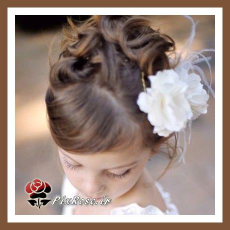 موی دخترکوچوالوها