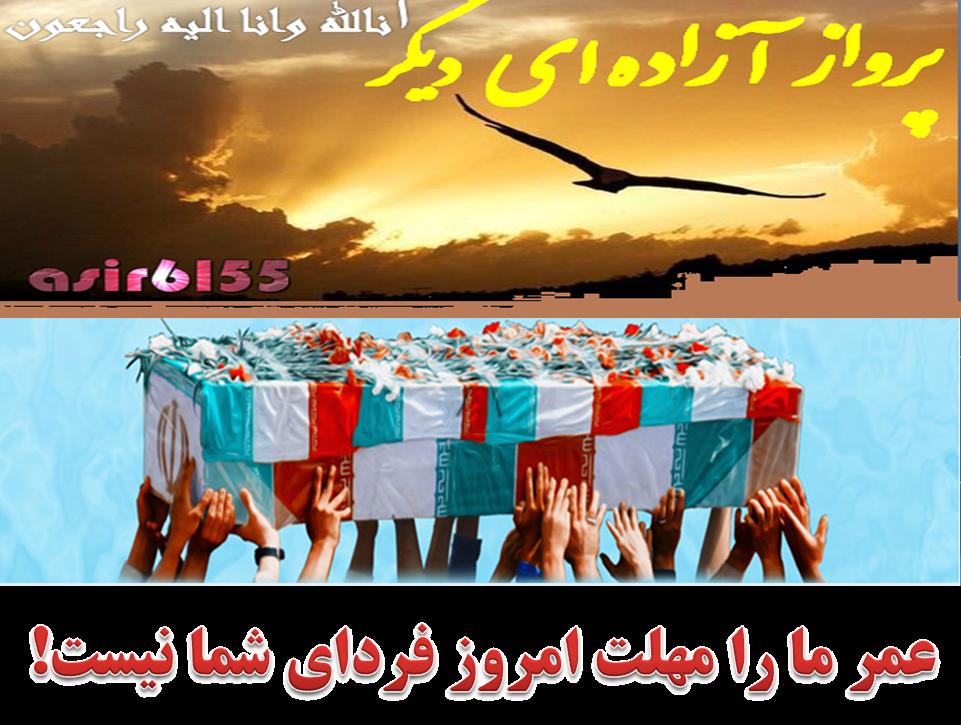 معوقات جانبازان اسیر6155