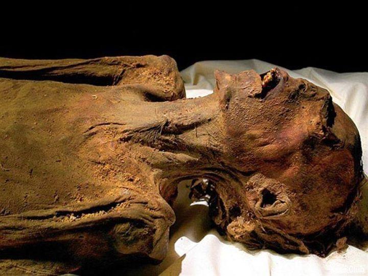 فریادهای دردناک مومیایی فرعون سههزارساله