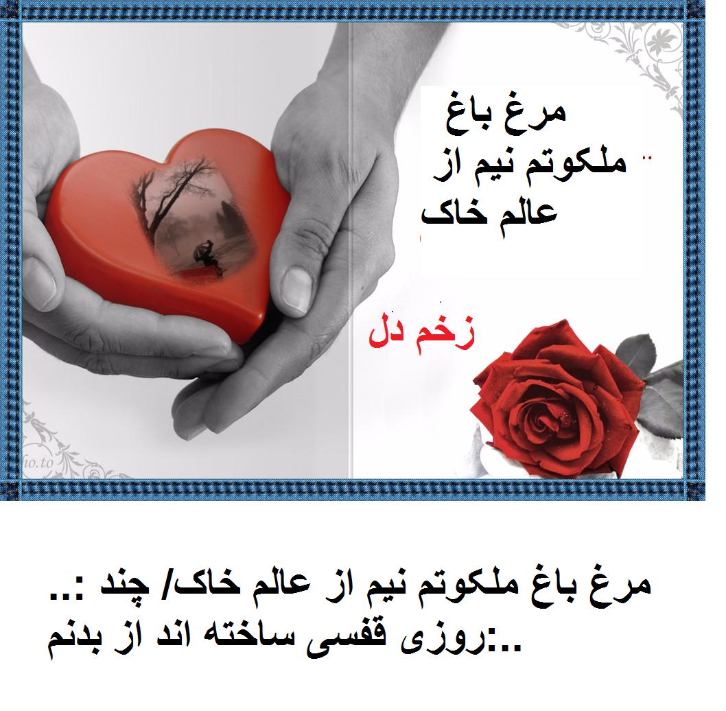 زخم دل
