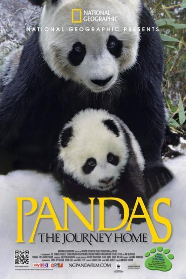 دانلود مستند حیوانات Pandas: The Journey Home 2014
