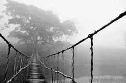 عکس پل چوبی روی رودخونه