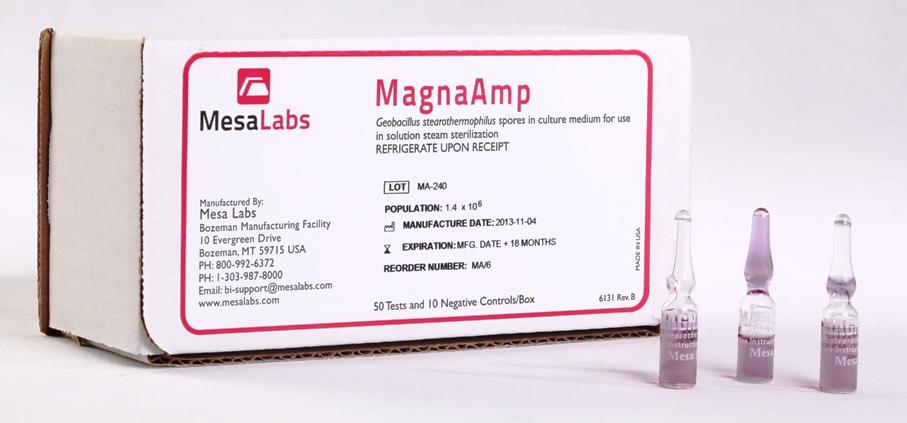 Magna Amp