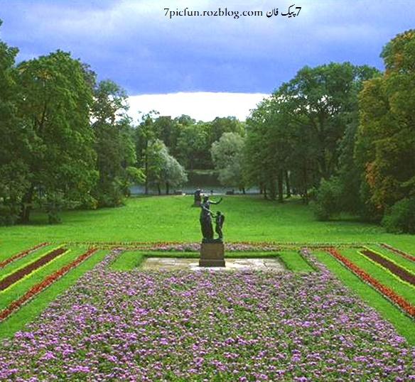 عکس های بسیار زیبا از گل و طبیعت