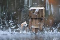 عکس فانتزی باران