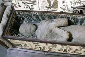 مومیایی خفته در اتاق زیرشیروانی (عکس) , جالب وخواندنی