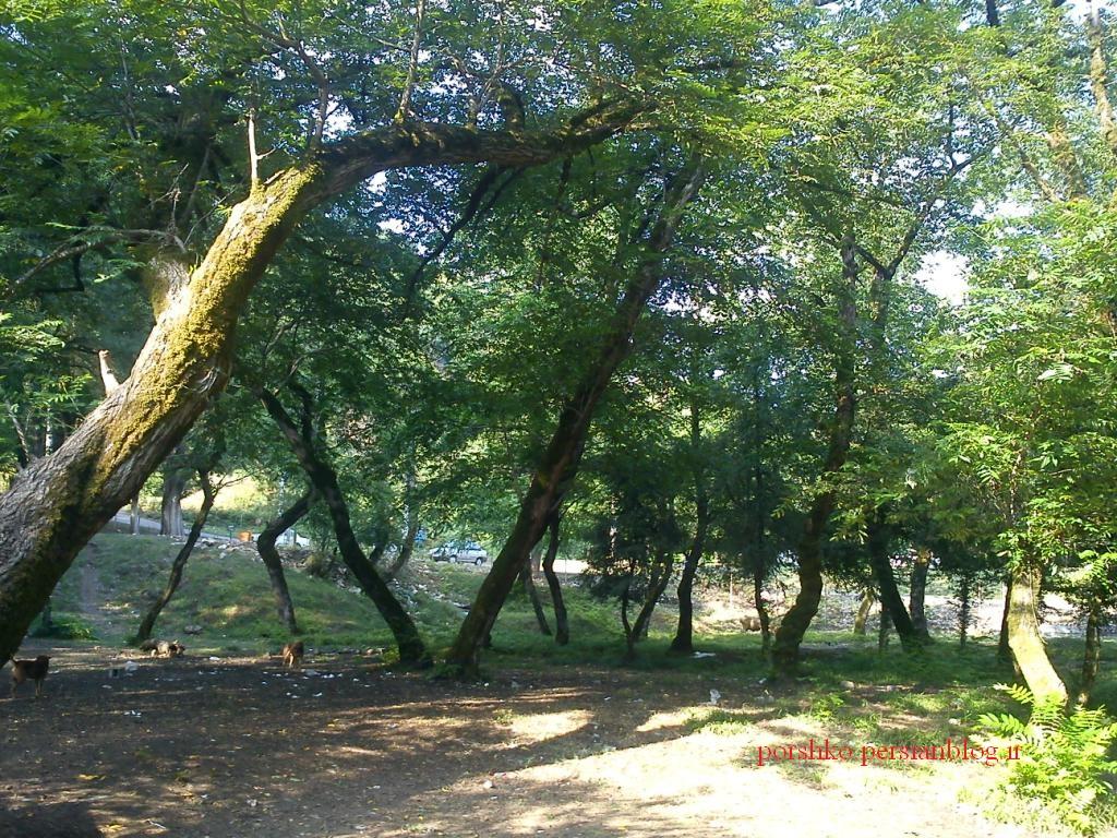 لاهیجان -جاده بطرف لنگرود (اطاقور)