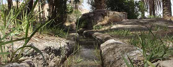 باغ خفرویه - علامرودشت