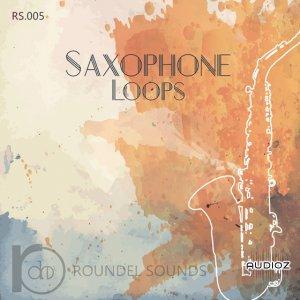 دانلود سمپل ساکسیفون_Roundel Sounds Saxophone Loops