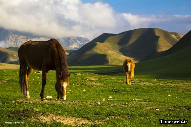 تصویری از کوه های سرسبز شهرستان کلات نادر