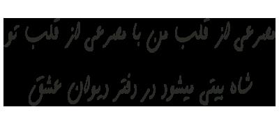 انجمن گفتگوی نیشگون